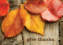 Give Thanks Autumn Leaves Thanksgiving Card